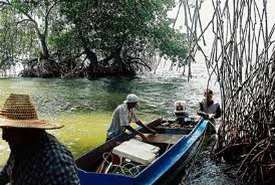 ¡Pescando en el lago!