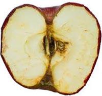 Apple: vergonzoso valor